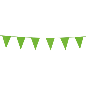 Bunting PE 3m. light green - size flags:10x15cm