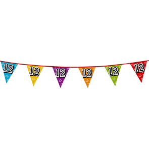 Bunting 'holographic' 8m '12' - size flags: 20x30cm