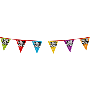 Bunting 'holographic' 8m '25' - size flags: 20x30cm