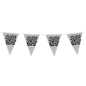Bunting 'holographic' 8m '25' silver - size flags: 20x30cm