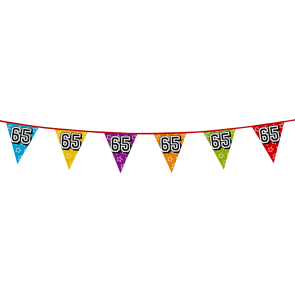 Bunting 'holographic' 8m '65' - size flags: 20x30cm