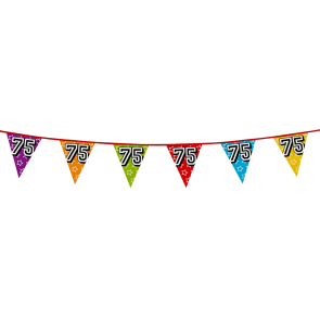 Bunting 'holographic' 8m '75' - size flags: 20x30cm