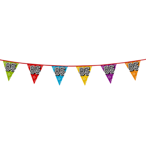 Bunting 'holographic' 8m '85' - size flags: 20x30cm