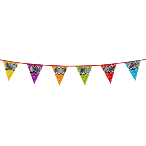 Bunting 'holographic' 8m '100' - size flags: 20x30cm