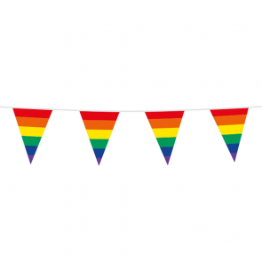 Bunting PE 10m. rainbow - size flags:20x30cm