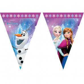 1 Triangle Flag Banner (9 flags) - Frozen Northern Lights